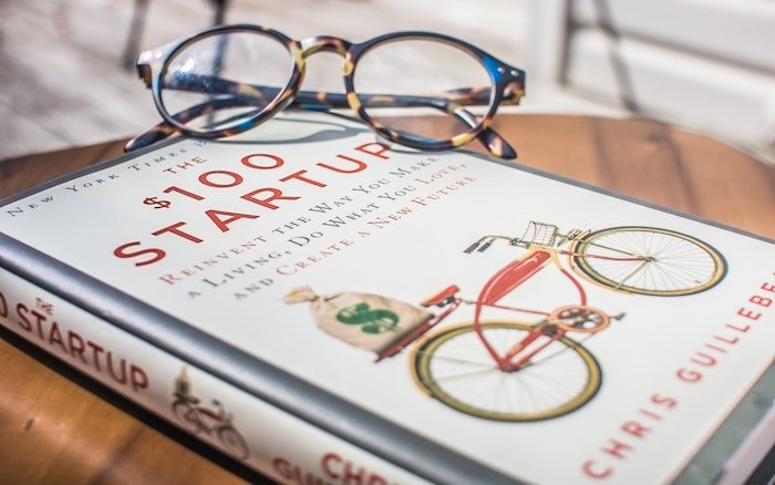 $100 Startup Book Review
